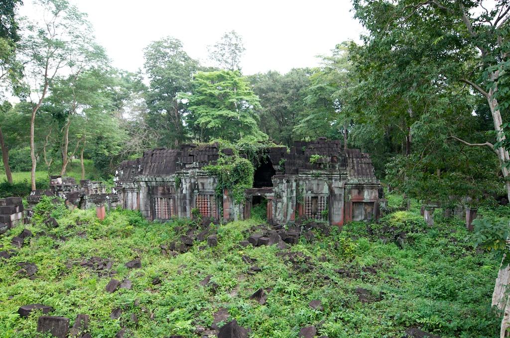 崩壊した遺跡を植物が覆う